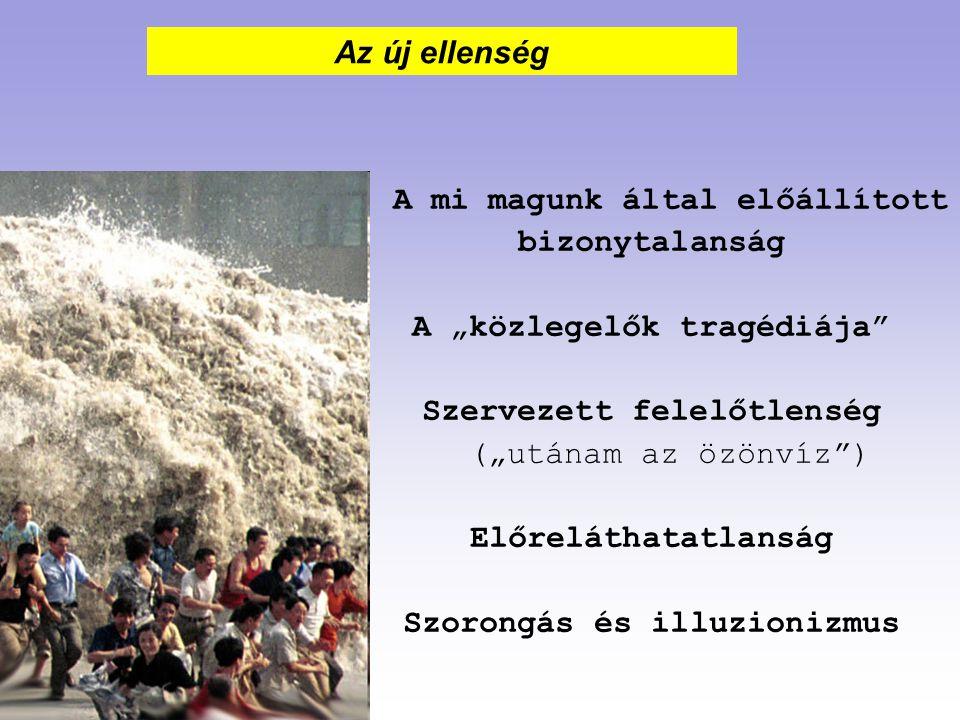 """A mi magunk által előállított bizonytalanság A """"közlegelők tragédiája"""" Szervezett felelőtlenség (""""utánam az özönvíz"""") Előreláthatatlanság Szorongás és"""
