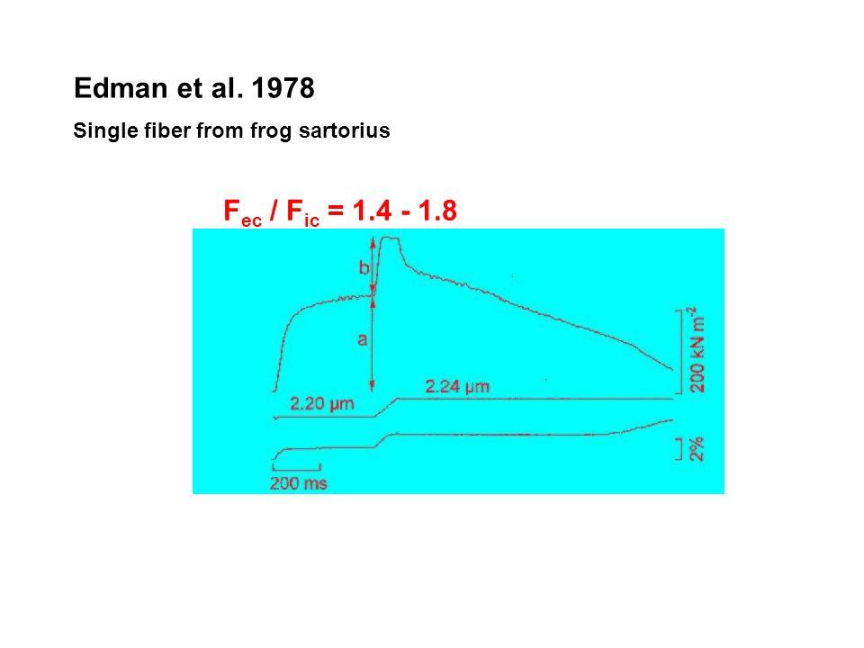 Short range stiffness (rövid kiterjedésű feszülésnövekedés): dF ecc /dt Short range stiffness (rövid kiterjedésű feszülésnövekedés): dF ecc /dt Teljes