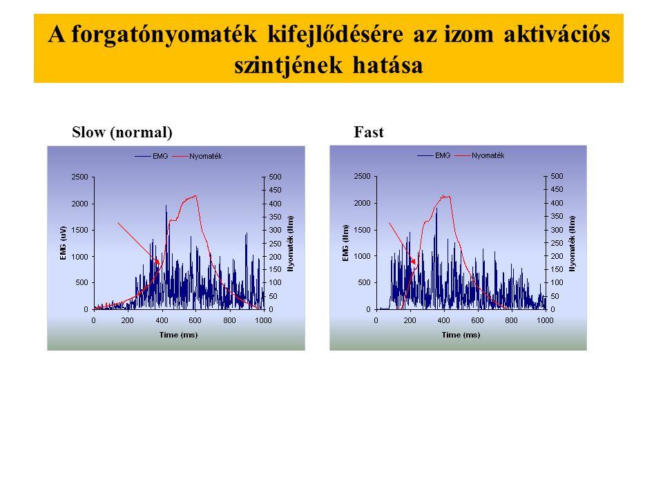 Az izom kezdeti feszülésének hatása az excentrikus forgatónyomatékra 20 % 40 % 60 % 80 % 100 %
