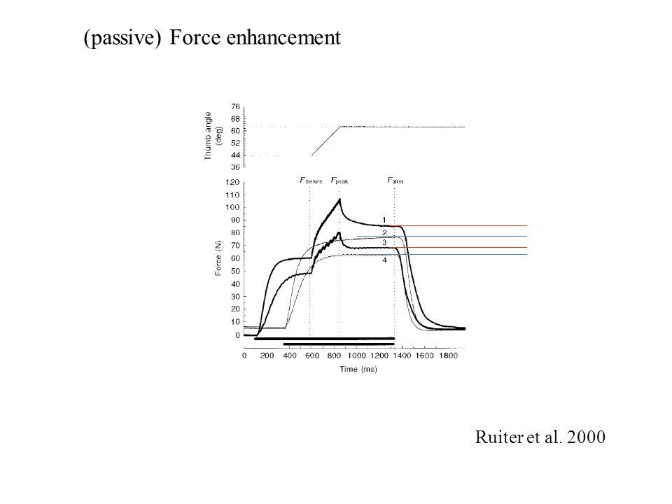 A visszamaradó feszülés mértéke függ az izomhossztól A nyugalmi hossznál nagyobb hosszon jelentősebb