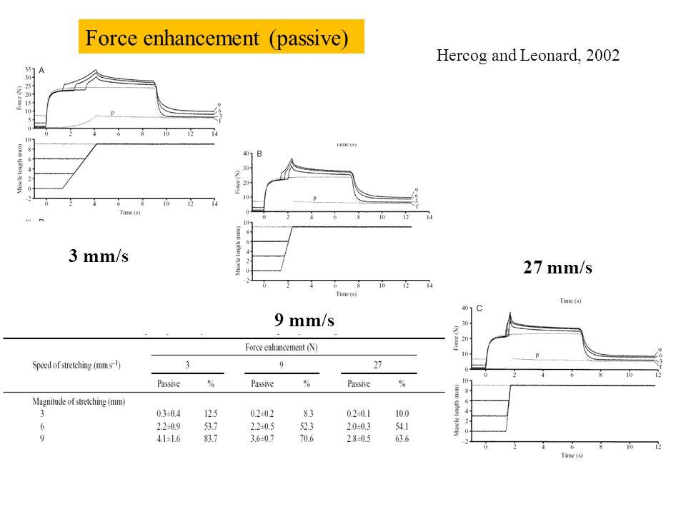 (passive) Force enhancement Ruiter et al. 2000