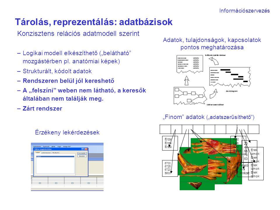 """Tárolás, reprezentálás: adatbázisok Konzisztens relációs adatmodell szerint –Logikai modell elkészíthető (""""belátható mozgástérben pl."""