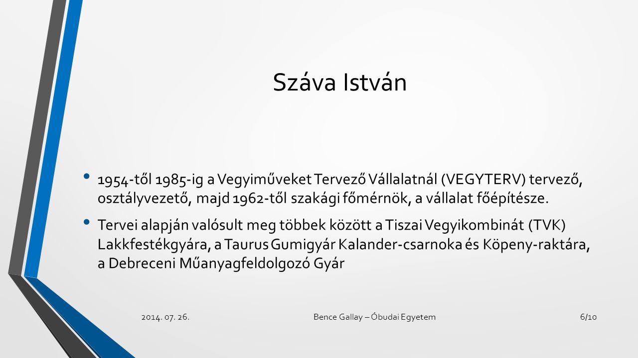 Száva István 1954-től 1985-ig a Vegyiműveket Tervező Vállalatnál (VEGYTERV) tervező, osztályvezető, majd 1962-től szakági főmérnök, a vállalat főépíté