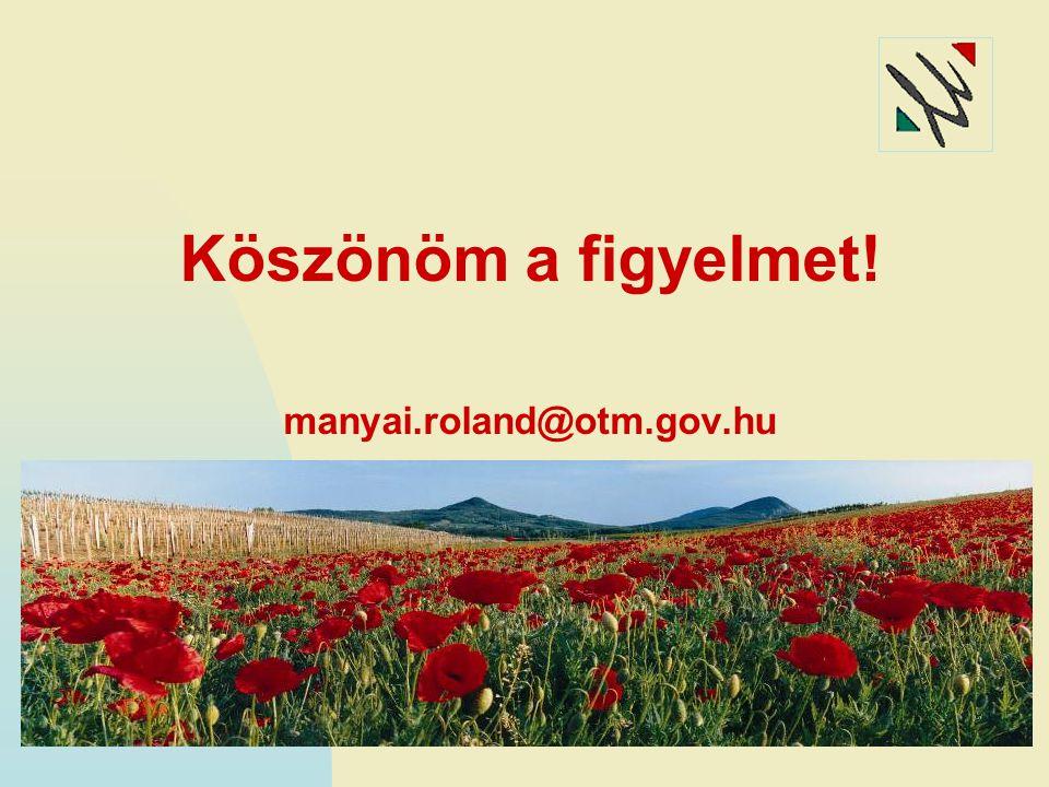 Köszönöm a figyelmet! manyai.roland@otm.gov.hu