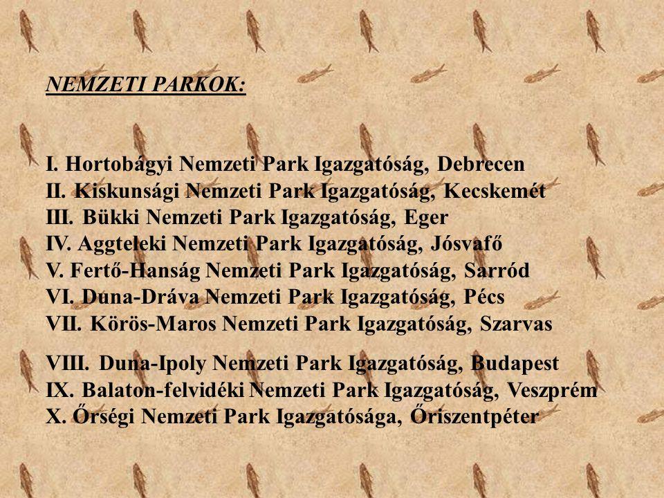 NEMZETI PARKOK: I. Hortobágyi Nemzeti Park Igazgatóság, Debrecen II. Kiskunsági Nemzeti Park Igazgatóság, Kecskemét III. Bükki Nemzeti Park Igazgatósá