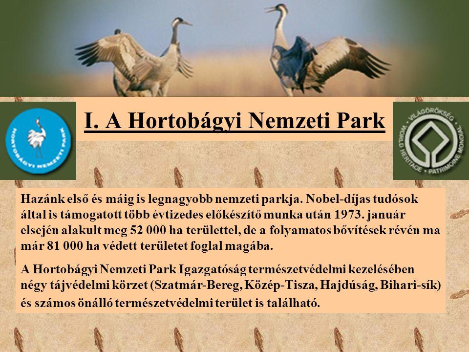 I. A Hortobágyi Nemzeti Park Hazánk első és máig is legnagyobb nemzeti parkja. Nobel-díjas tudósok által is támogatott több évtizedes előkészítő munka