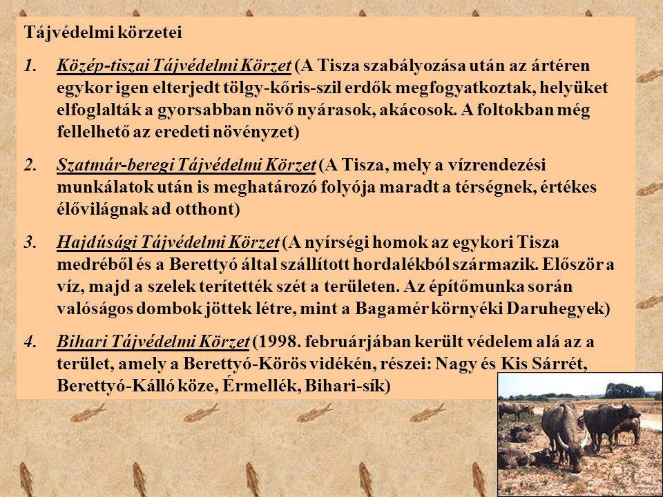 Tájvédelmi körzetei 1.Közép-tiszai Tájvédelmi Körzet (A Tisza szabályozása után az ártéren egykor igen elterjedt tölgy-kőris-szil erdők megfogyatkozta