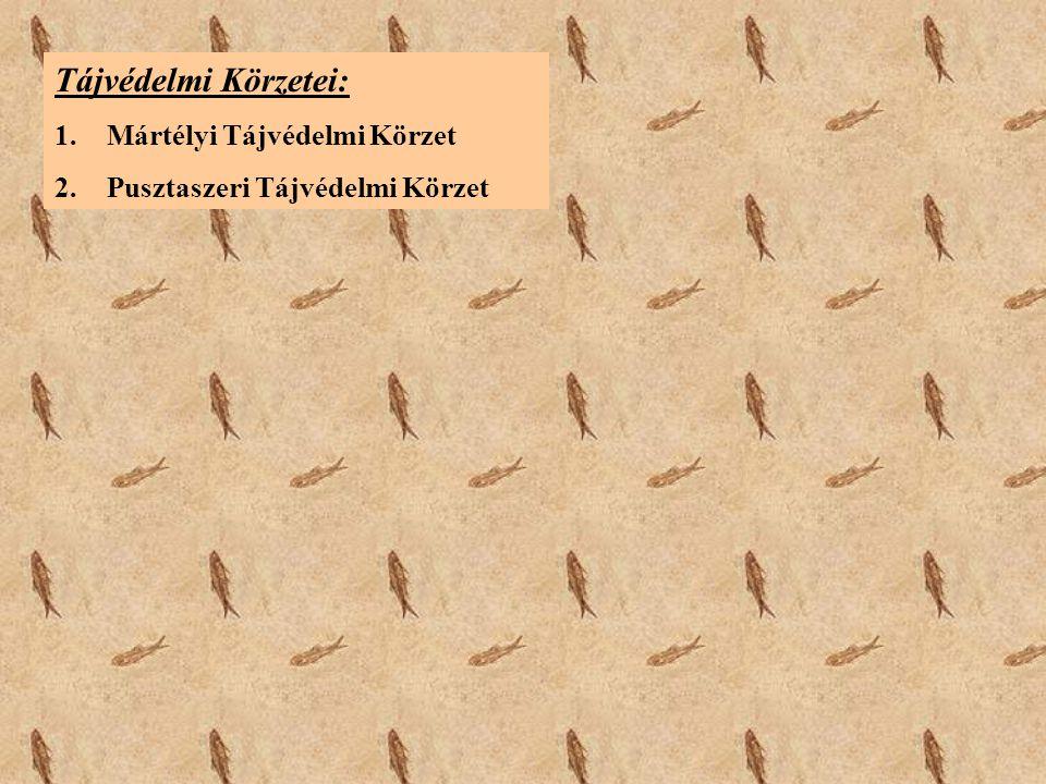 Tájvédelmi Körzetei: 1.Mártélyi Tájvédelmi Körzet 2.Pusztaszeri Tájvédelmi Körzet