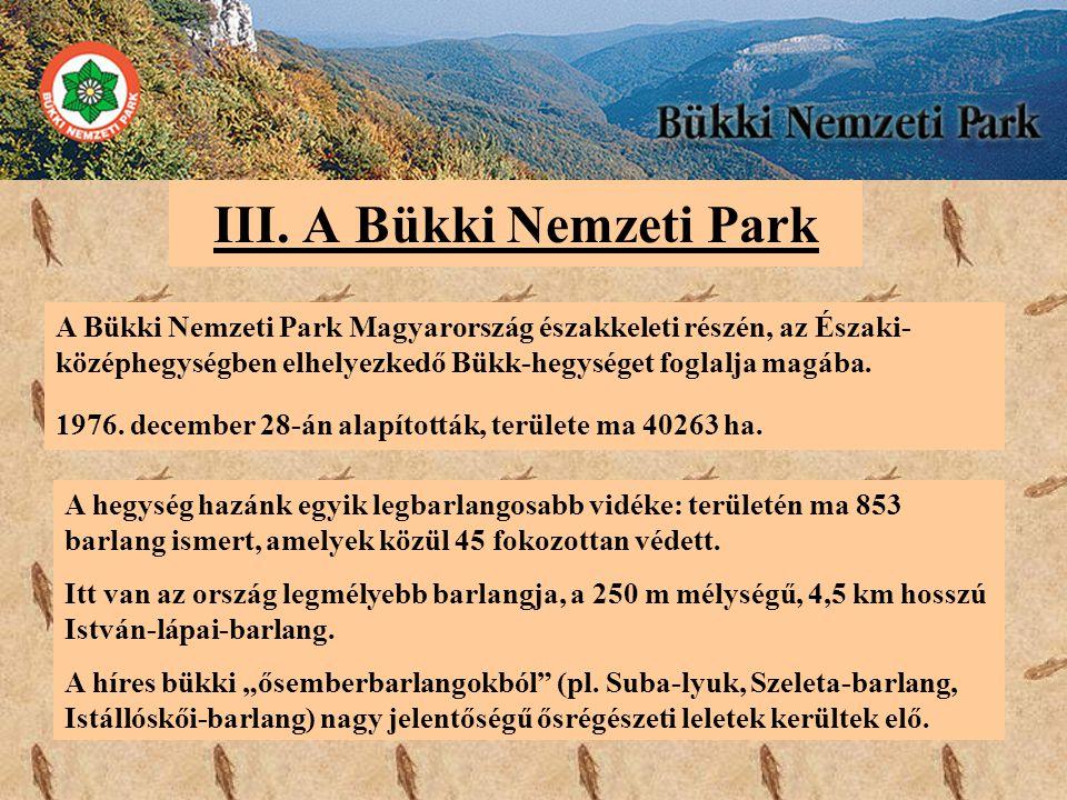 III. A Bükki Nemzeti Park A Bükki Nemzeti Park Magyarország északkeleti részén, az Északi- középhegységben elhelyezkedő Bükk-hegységet foglalja magába