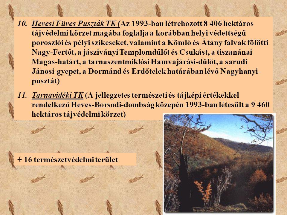 10.Hevesi Füves Puszták TK (Az 1993-ban létrehozott 8 406 hektáros tájvédelmi körzet magába foglalja a korábban helyi védettségű poroszlói és pélyi sz