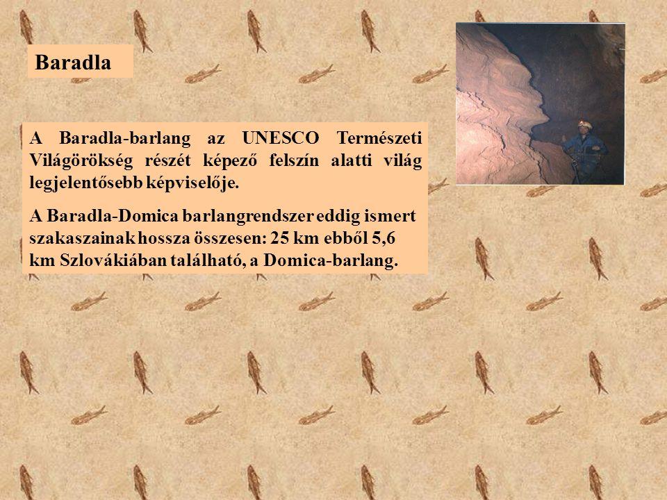 Baradla A Baradla-barlang az UNESCO Természeti Világörökség részét képező felszín alatti világ legjelentősebb képviselője. A Baradla-Domica barlangren