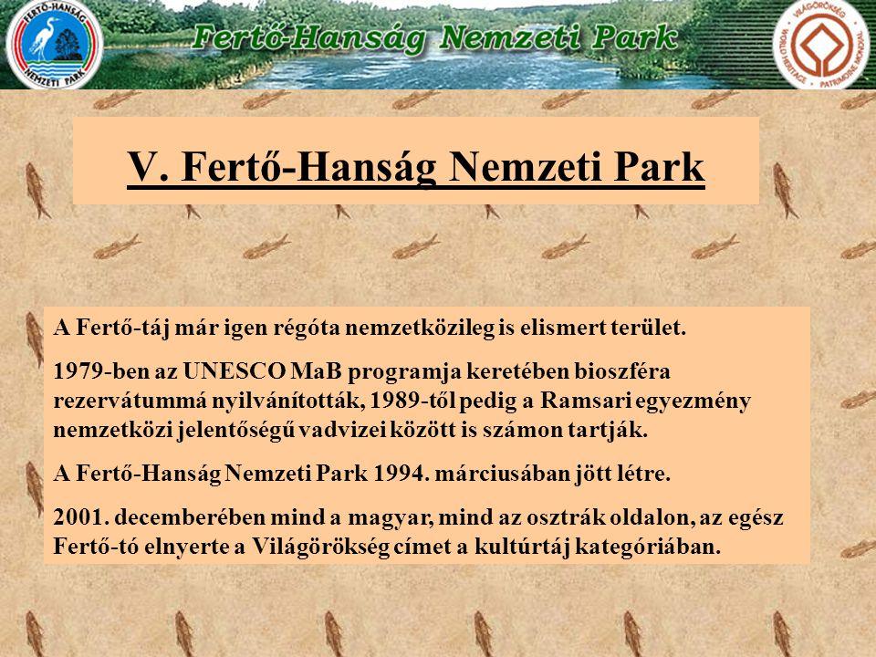 V. Fertő-Hanság Nemzeti Park A Fertő-táj már igen régóta nemzetközileg is elismert terület. 1979-ben az UNESCO MaB programja keretében bioszféra rezer