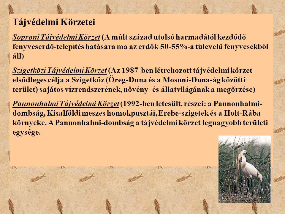 Tájvédelmi Körzetei Soproni Tájvédelmi Körzet (A múlt század utolsó harmadától kezdődő fenyveserdő-telepítés hatására ma az erdők 50-55%-a tűlevelű fe