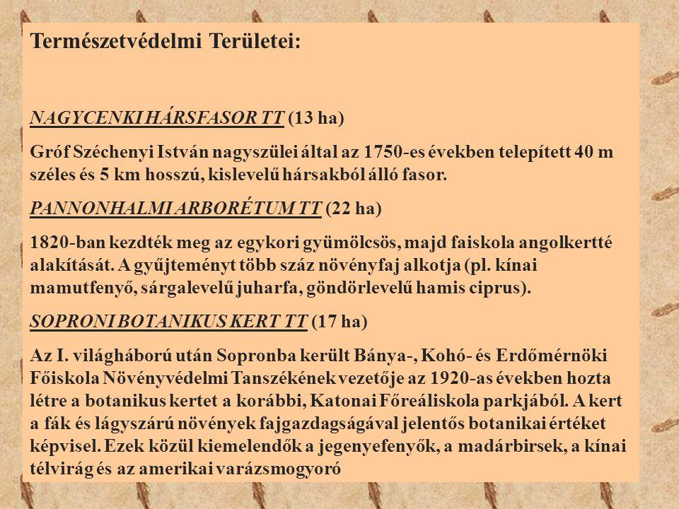 Természetvédelmi Területei: NAGYCENKI HÁRSFASOR TT (13 ha) Gróf Széchenyi István nagyszülei által az 1750-es években telepített 40 m széles és 5 km ho