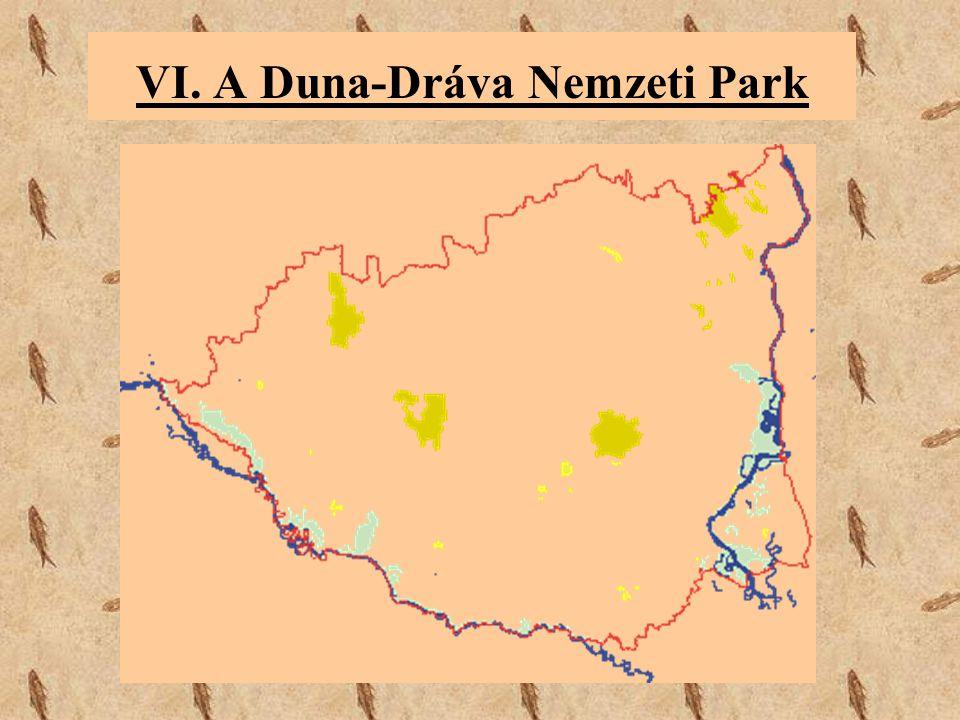 VI. A Duna-Dráva Nemzeti Park