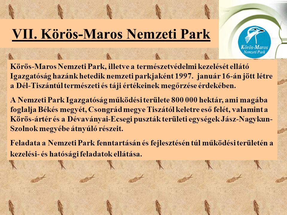 VII. Körös-Maros Nemzeti Park Körös-Maros Nemzeti Park, illetve a természetvédelmi kezelését ellátó Igazgatóság hazánk hetedik nemzeti parkjaként 1997