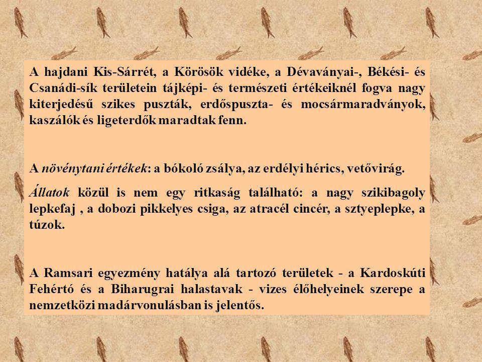 A hajdani Kis-Sárrét, a Körösök vidéke, a Dévaványai-, Békési- és Csanádi-sík területein tájképi- és természeti értékeiknél fogva nagy kiterjedésű szi