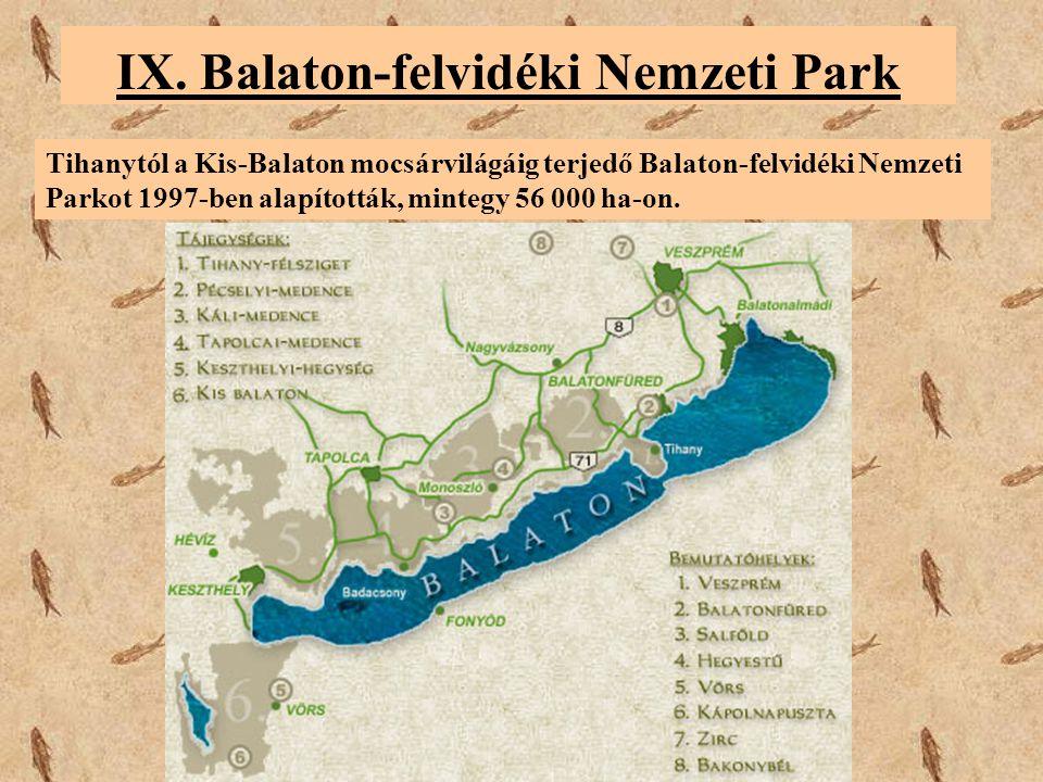 IX. Balaton-felvidéki Nemzeti Park Tihanytól a Kis-Balaton mocsárvilágáig terjedő Balaton-felvidéki Nemzeti Parkot 1997-ben alapították, mintegy 56 00
