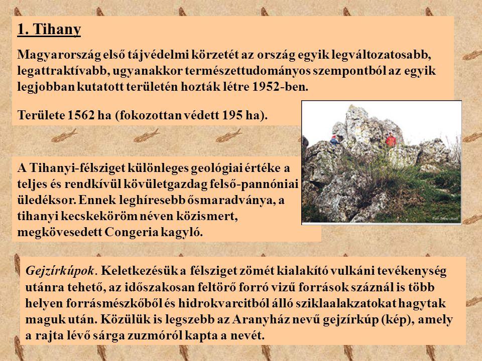 1. Tihany Magyarország első tájvédelmi körzetét az ország egyik legváltozatosabb, legattraktívabb, ugyanakkor természettudományos szempontból az egyik