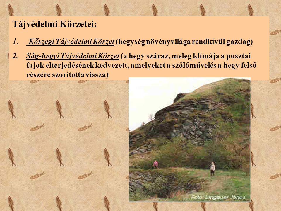 Tájvédelmi Körzetei: 1. Kőszegi Tájvédelmi Körzet (hegység növényvilága rendkívül gazdag) 2.Ság-hegyi Tájvédelmi Körzet (a hegy száraz, meleg klímája