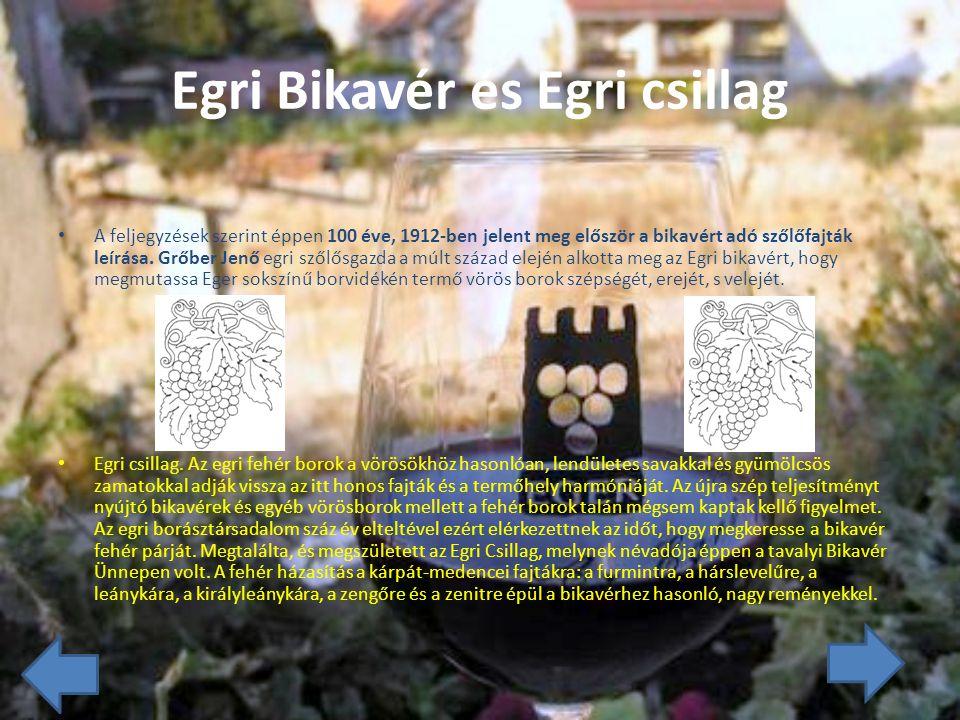 Egri Bikavér és Egri csillag A feljegyzések szerint éppen 100 éve, 1912-ben jelent meg először a bikavért adó szőlőfajták leírása.