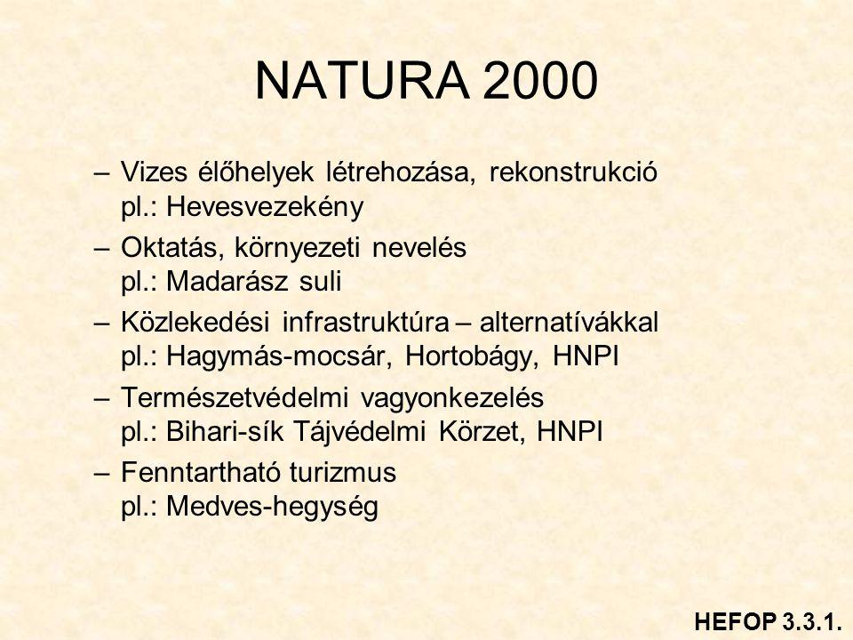NATURA 2000 –Vizes élőhelyek létrehozása, rekonstrukció pl.: Hevesvezekény –Oktatás, környezeti nevelés pl.: Madarász suli –Közlekedési infrastruktúra – alternatívákkal pl.: Hagymás-mocsár, Hortobágy, HNPI –Természetvédelmi vagyonkezelés pl.: Bihari-sík Tájvédelmi Körzet, HNPI –Fenntartható turizmus pl.: Medves-hegység HEFOP 3.3.1.