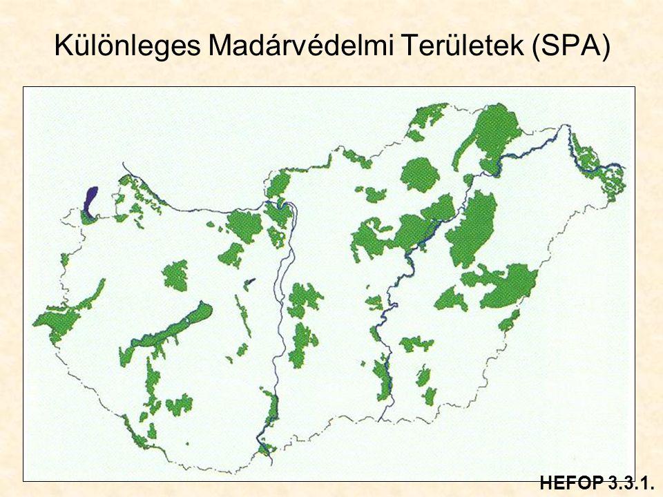 Különleges Madárvédelmi Területek (SPA) HEFOP 3.3.1.