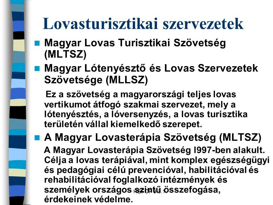 HEFOP 3.3.1. Lovasturisztikai szervezetek Magyar Lovas Turisztikai Szövetség (MLTSZ) Magyar Lótenyésztő és Lovas Szervezetek Szövetsége (MLLSZ) Ez a s