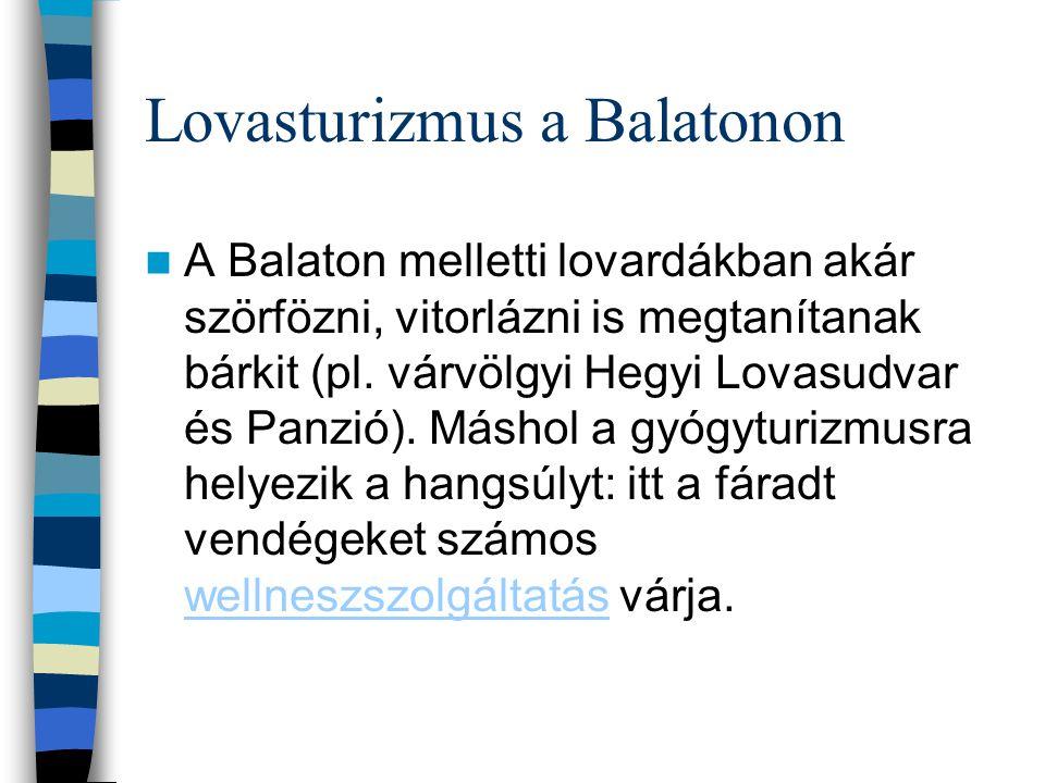 Lovasturizmus a Balatonon A Balaton melletti lovardákban akár szörfözni, vitorlázni is megtanítanak bárkit (pl. várvölgyi Hegyi Lovasudvar és Panzió).