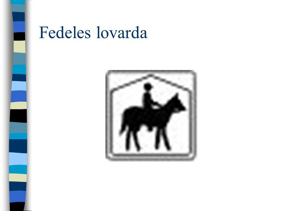Fedeles lovarda