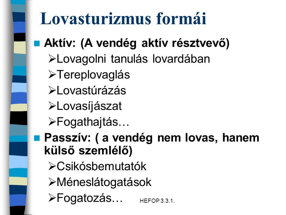 HEFOP 3.3.1.A lovasturizmus hazai története Szabadidő kategóriába kerülés óta van lovasturizmus.