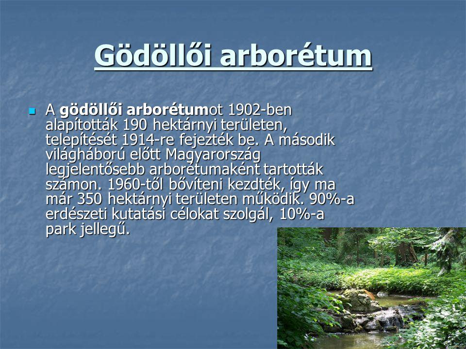 Gödöllői arborétum A gödöllői arborétumot 1902-ben alapították 190 hektárnyi területen, telepítését 1914-re fejezték be. A második világháború előtt M