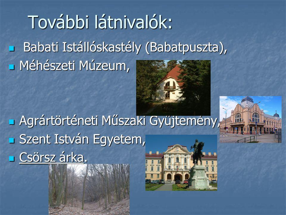 További látnivalók: Babati Istállóskastély (Babatpuszta), Babati Istállóskastély (Babatpuszta), Méhészeti Múzeum, Méhészeti Múzeum, Agrártörténeti Műs