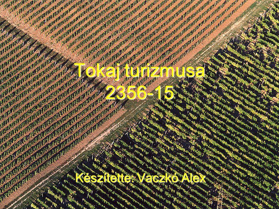 Tokaj turizmusa 2356-15 Készítette: Vaczkó Alex