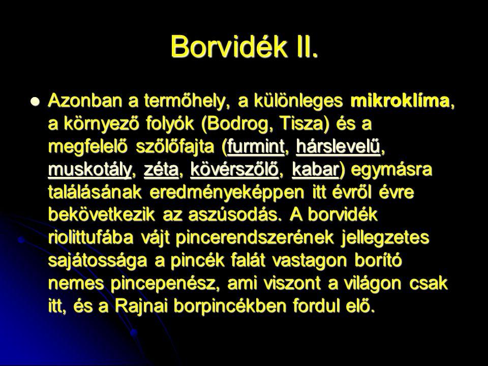 Borvidék II.