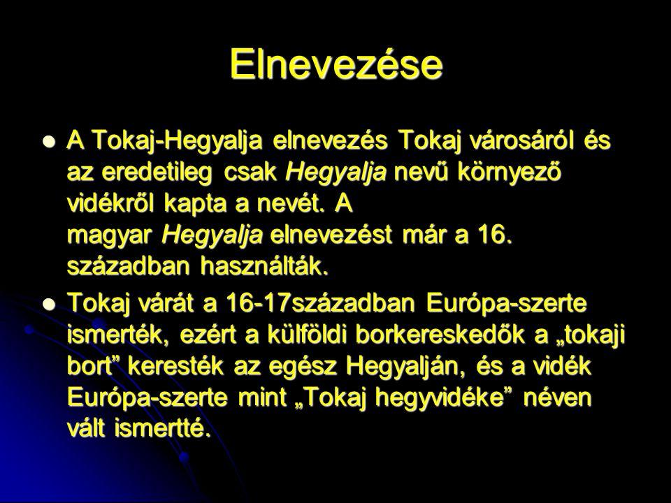 Elnevezése A Tokaj-Hegyalja elnevezés Tokaj városáról és az eredetileg csak Hegyalja nevű környező vidékről kapta a nevét.