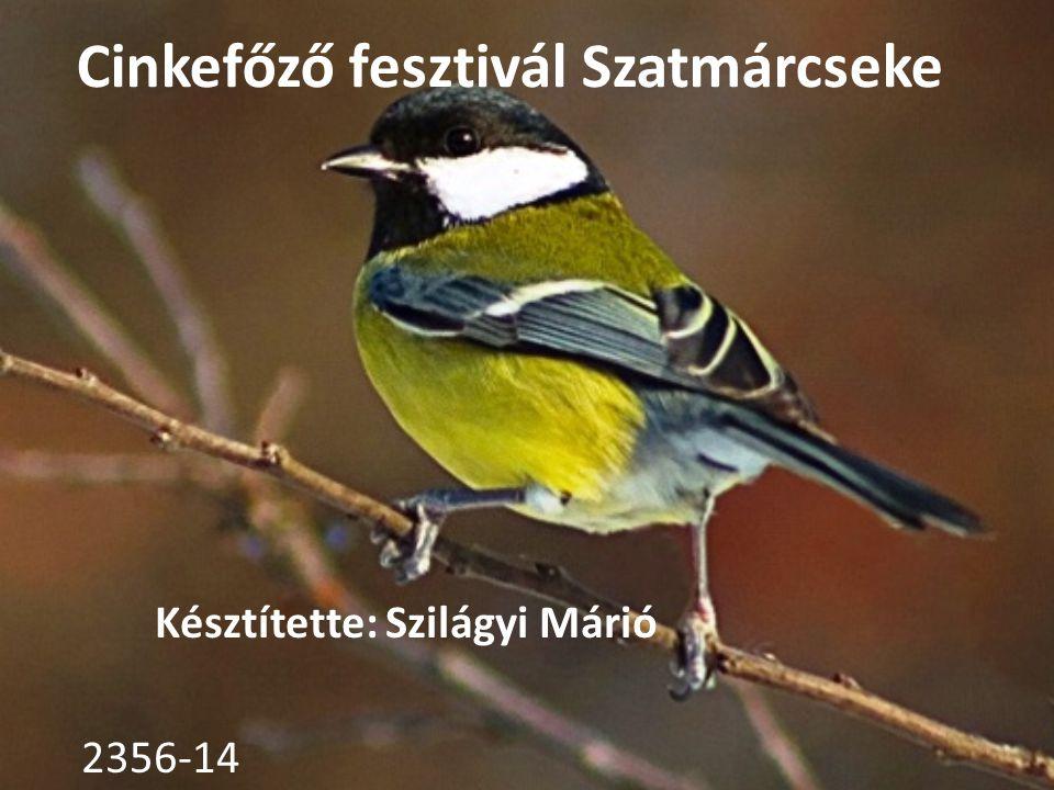 Cinkefőző fesztivál Szatmárcseke Késztítette: Szilágyi Márió 2356-14