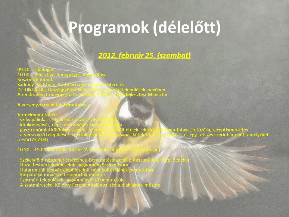 Programok (délelőtt) 2012. február 25.