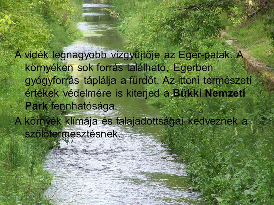 A vidék legnagyobb vízgyűjtője az Eger-patak. A környéken sok forrás található, Egerben gyógyforrás táplálja a fürdőt. Az itteni természeti értékek vé