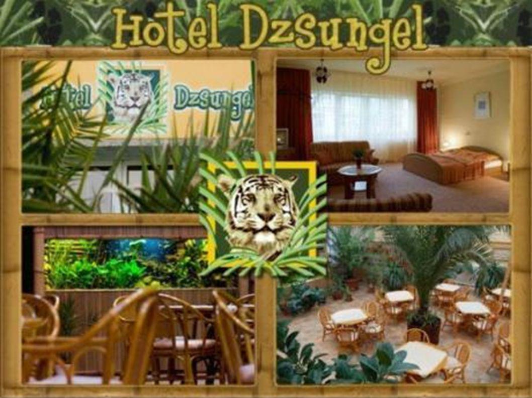 Elhelyezkedése A Hotel Dzsungel a Nyíregyházához közeli Sóstógyógyfürdőn található.