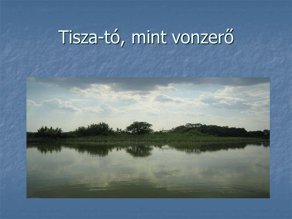 Tisza-tó, mint vonzerő