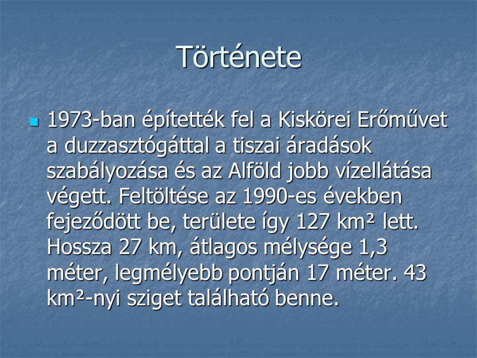 Elhelyezkedése A Tisza-tó Magyarország keleti régiójában Kisköre és Tiszabábolna között van A Tisza-tó Magyarország keleti régiójában Kisköre és Tiszabábolna között van Heves megye délkeleti szélén, Borsod- Abaúj-Zemplén, Hajdú-Bihar és Jász- Nagykun-Szolnok megye határán fekszik.
