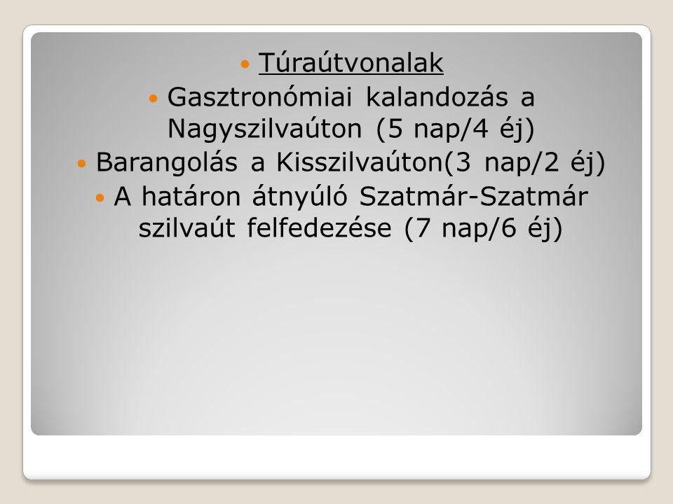 Túraútvonalak Gasztronómiai kalandozás a Nagyszilvaúton (5 nap/4 éj) Barangolás a Kisszilvaúton(3 nap/2 éj) A határon átnyúló Szatmár-Szatmár szilvaút
