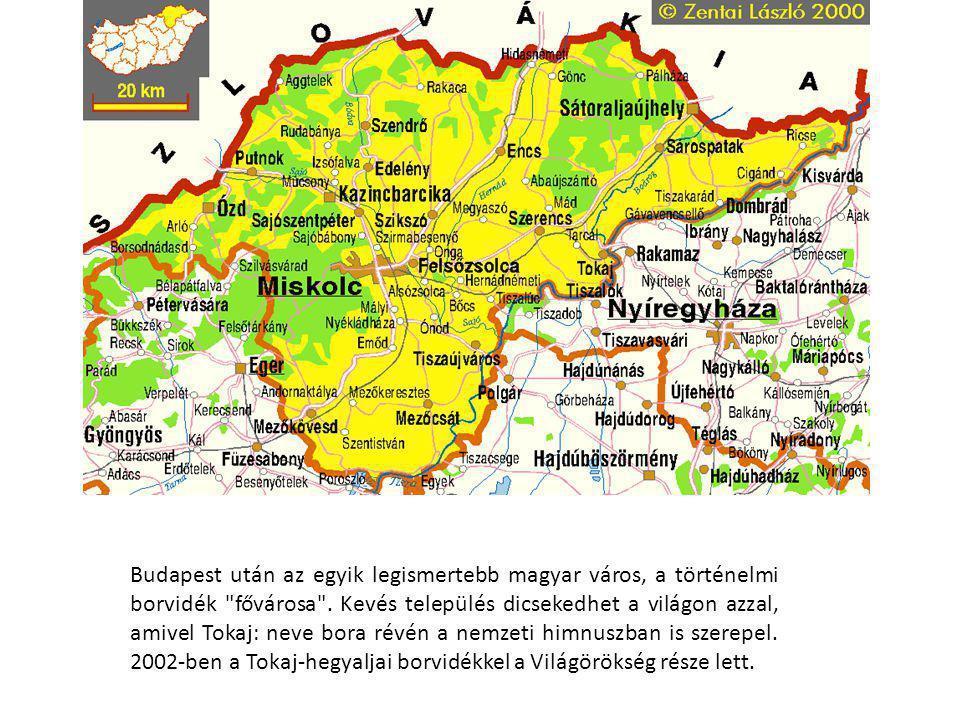 Budapest után az egyik legismertebb magyar város, a történelmi borvidék