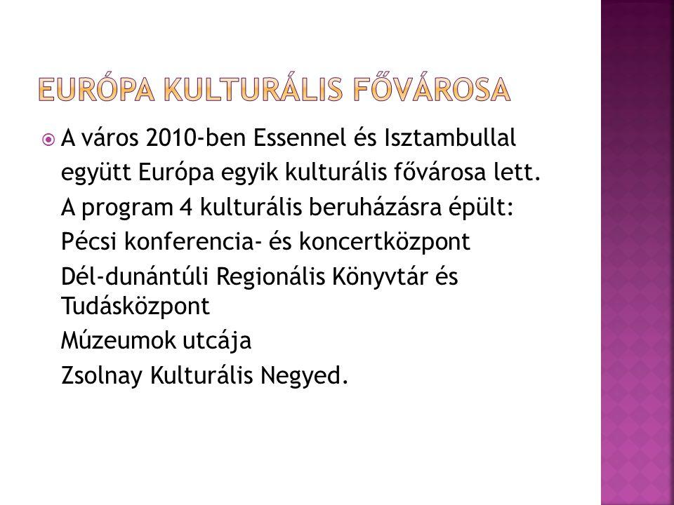  A város 2010-ben Essennel és Isztambullal együtt Európa egyik kulturális fővárosa lett. A program 4 kulturális beruházásra épült: Pécsi konferencia-