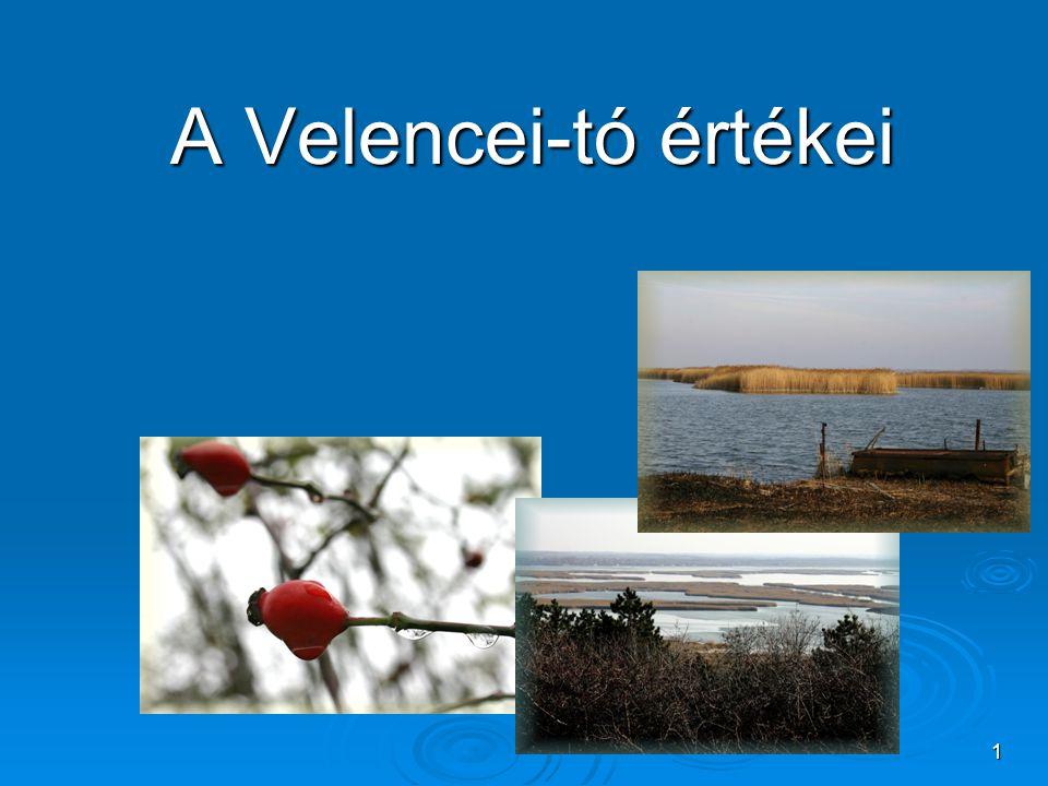1 A Velencei-tó értékei