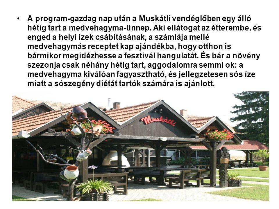 A program-gazdag nap után a Muskátli vendéglőben egy álló hétig tart a medvehagyma-ünnep.