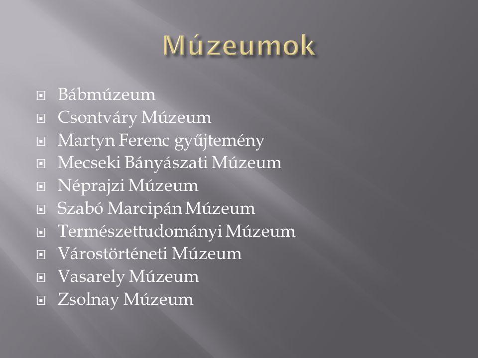  Bábmúzeum  Csontváry Múzeum  Martyn Ferenc gyűjtemény  Mecseki Bányászati Múzeum  Néprajzi Múzeum  Szabó Marcipán Múzeum  Természettudományi M