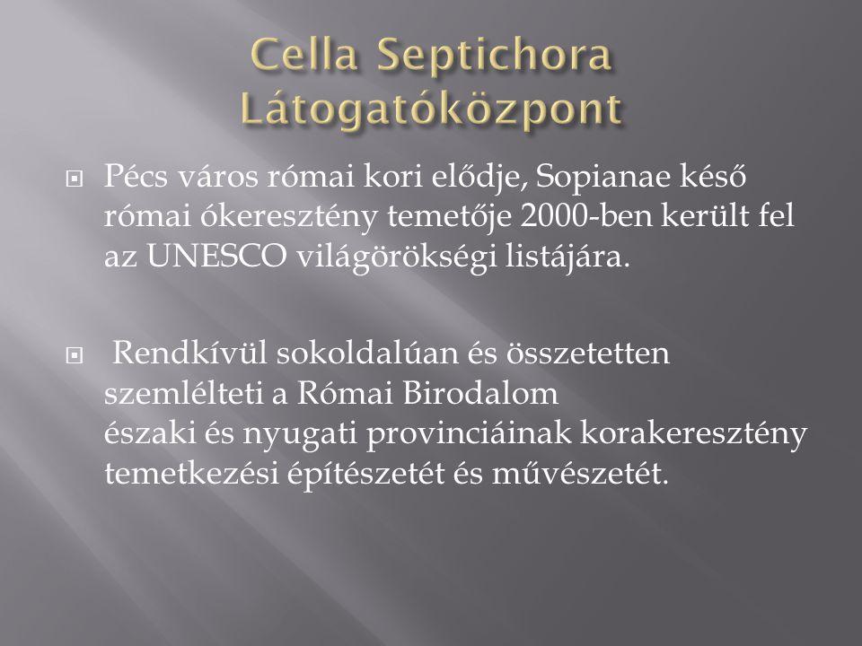  Pécs város római kori elődje, Sopianae késő római ókeresztény temetője 2000-ben került fel az UNESCO világörökségi listájára.  Rendkívül sokoldalúa