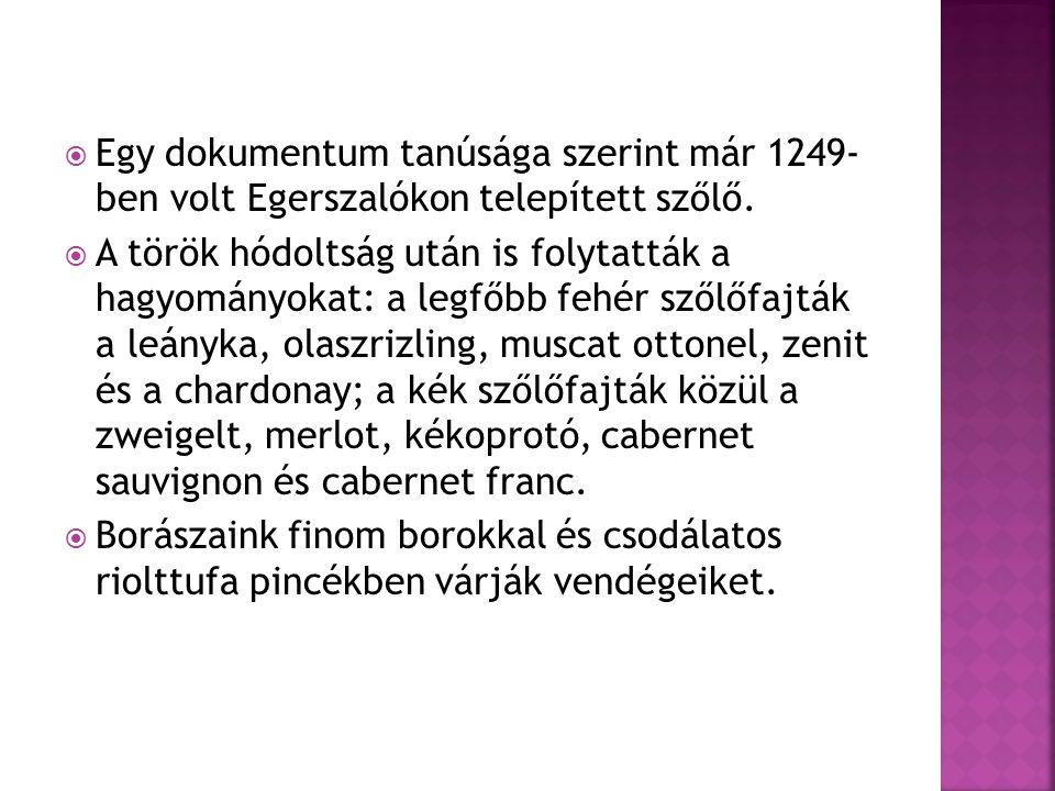  Egy dokumentum tanúsága szerint már 1249- ben volt Egerszalókon telepített szőlő.  A török hódoltság után is folytatták a hagyományokat: a legfőbb